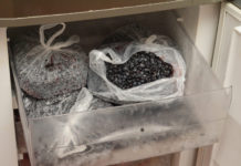 Freezing berries can change their nutritional profile